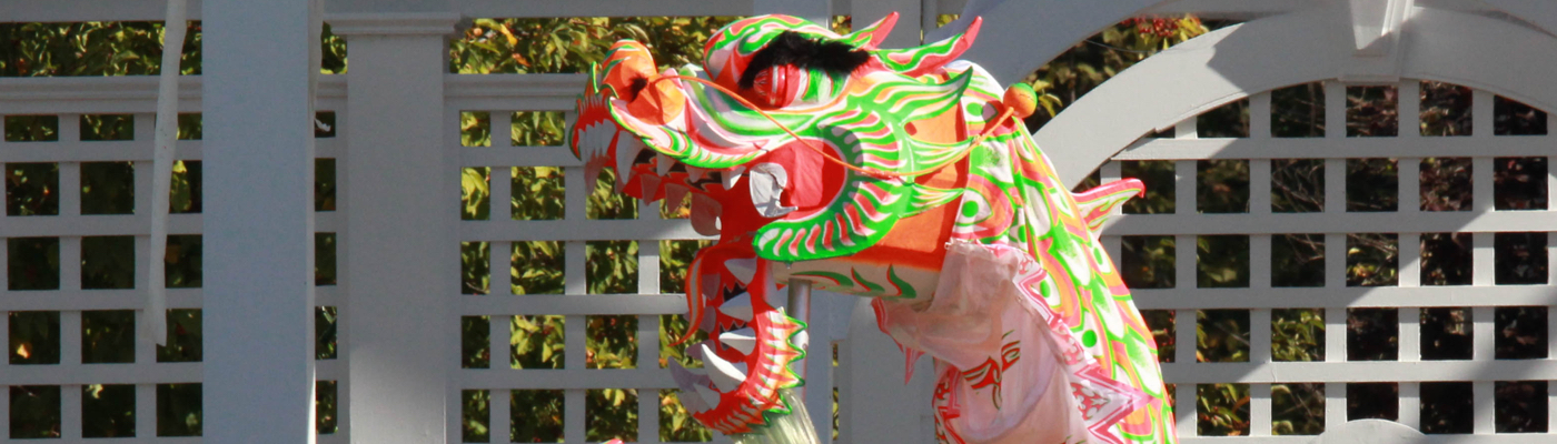 Asian American Dragon & Lion Dance
